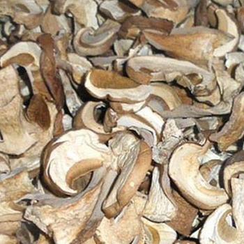 Сушка: приготовление грибов в домашних условиях