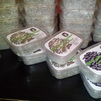 Зерновой мицелий и субстрат для выращивания грибов