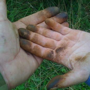 Чистка рук после маслят: простые рецепты