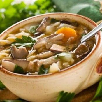 Отварные маслята на зиму: рецепты вкусных блюд