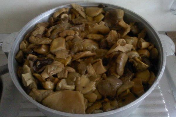 Маринованные грибы на зиму: домашние рецепты