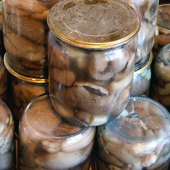 Вкусные маслята на зиму: рецепты заготовок из грибов