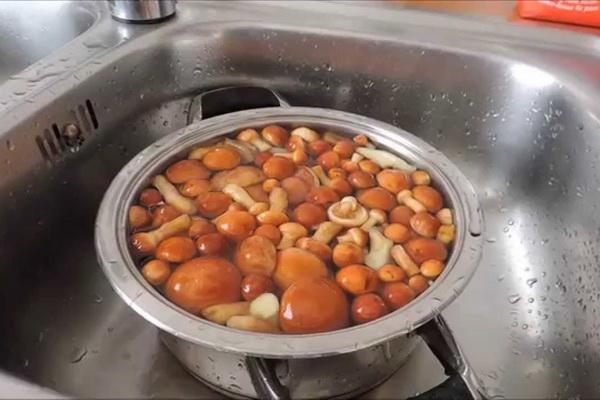 Рецепты засолки маслят на зиму горячим способом
