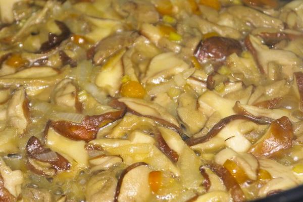 грибница с маслятами рецепт с фото
