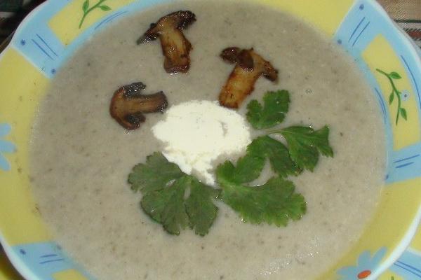 рецепт грибного супа из замороженных грибов опят