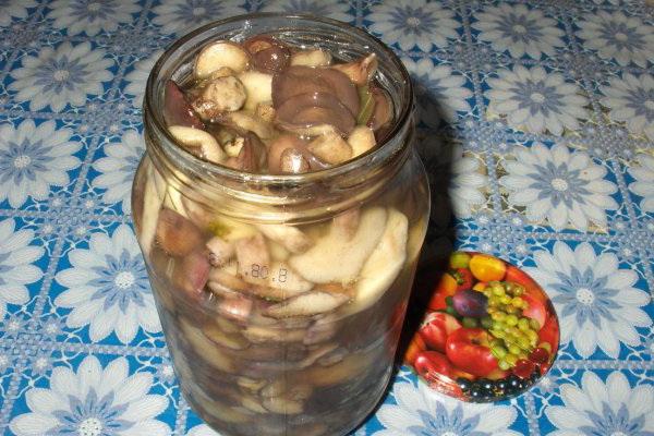 Соленые маслята на зиму: простые рецепты приготовления