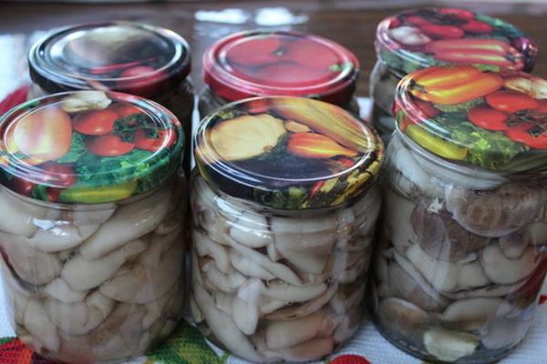 Приготовление маринованных маслят: рецепты на зиму