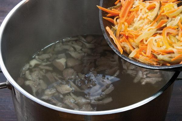Сушеные вешенки и рецепты блюд из них