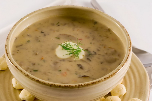 Суп-пюре из вешенок: рецепты первых блюд