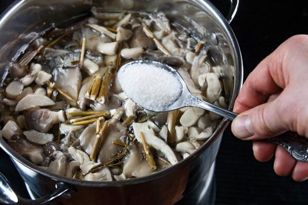 Как правильно готовить лесные грибы вешенки