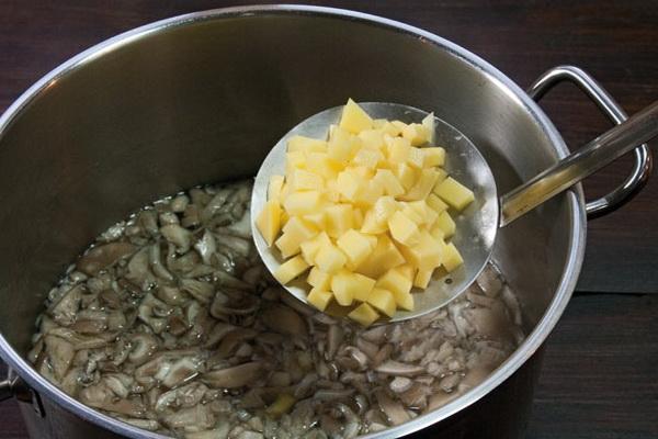 Грибные супы из свежих и замороженных вешенок