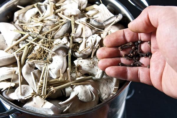 волнушки грибы как приготовить рецепты я