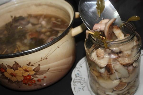 Опята, маринованные с яблочным уксусом: рецепты закусок