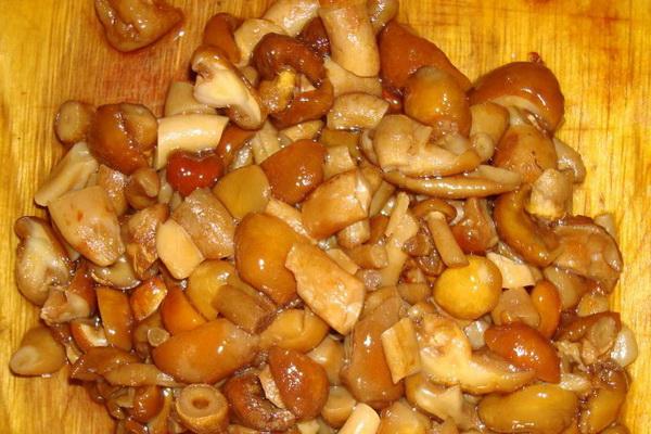 Опята с майонезом: рецепты грибных блюд