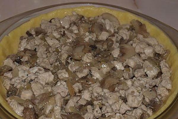 Рецепты пирогов с мясным фаршем и грибами