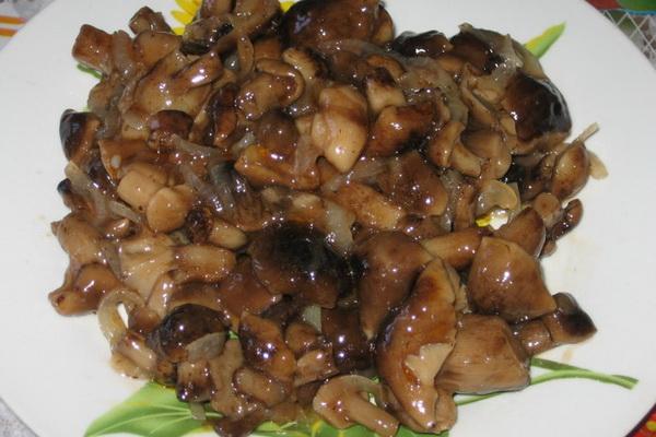 Опята в томате: как приготовить грибы на зиму
