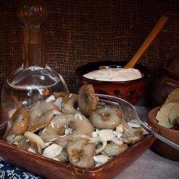 Квашеные опята: рецепты заготовок на зиму