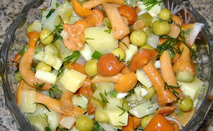 Рецепты вкусных салатов с грибами и картофелем