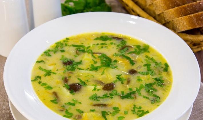 Суп-пюре из свежих и замороженных опят
