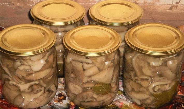 Как мариновать грузди: рецепт с фото маринованных грибов и видео