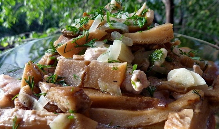 Какие блюда можно приготовить из груздей?