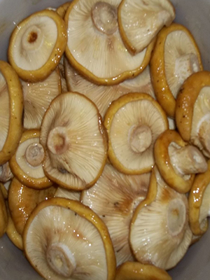Рецепты маринования груздей на зиму в домашних условиях (с фото)