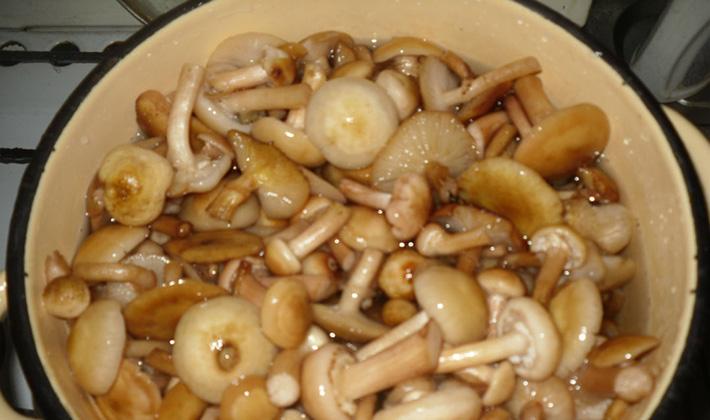 Рецепты простых и вкусных блюд для праздничного стола