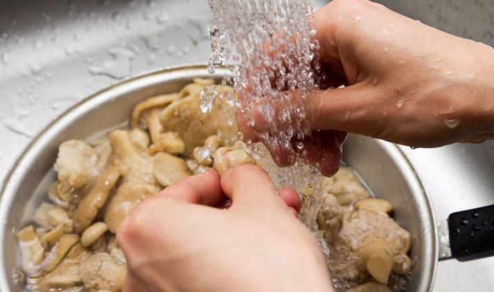 Как мариновать пеньковые опята: рецепты на зиму