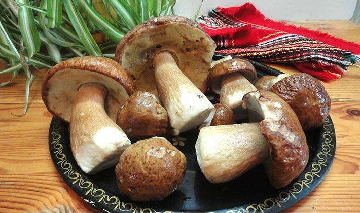 Как мариновать белые грибы без стерилизации