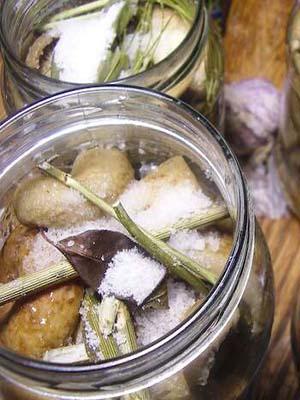 Как хранить черные и белые соленые грузди на зиму: в домашних условиях в стеклянных банках