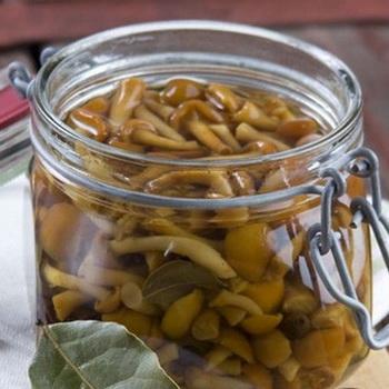 Самые вкусные рецепты браги