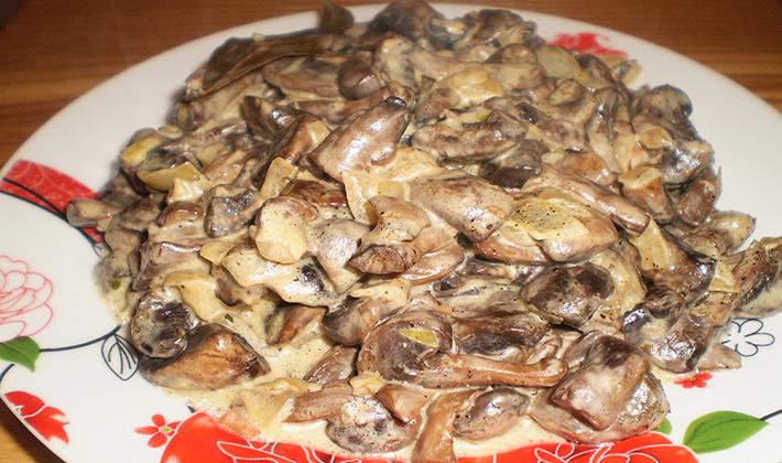 Рецепты блюд из груздей с луком