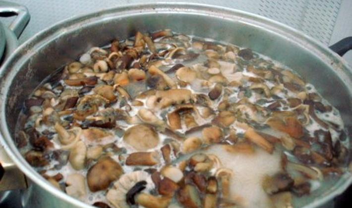 опята на зиму без уксуса рецепты приготовления