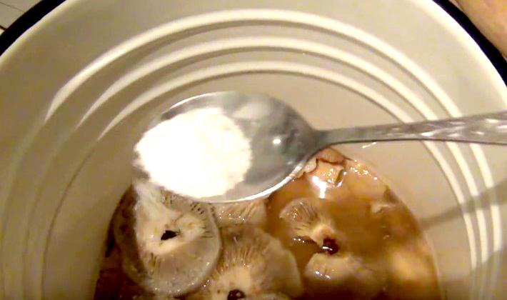 Грузди соленые в бочке и рецепты их приготовления