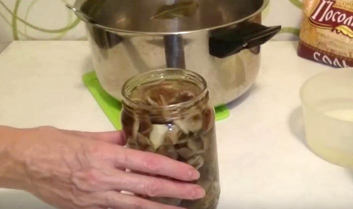 Маринованные опята: рецепты заготовок на зиму