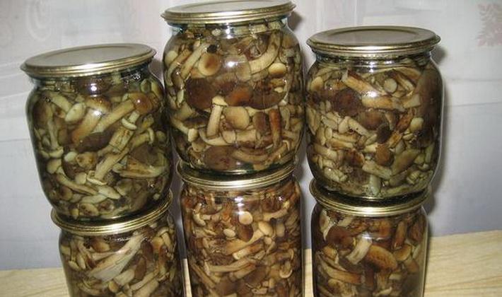 Рецепты консервации грибов на зиму пошагово