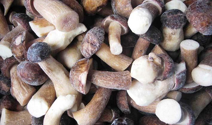 Заморозка и хранение белых грибов в холодильнике