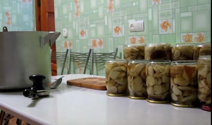 Как консервировать белые грибы в домашних условиях
