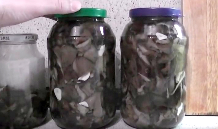 Опята, маринованные на зиму с разными видами уксуса