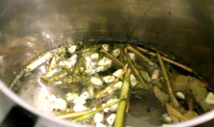 грибы на зиму без уксуса рецепты приготовления