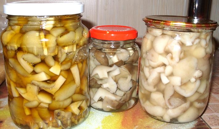Опята без стерилизации: рецепты заготовок из грибов на зиму