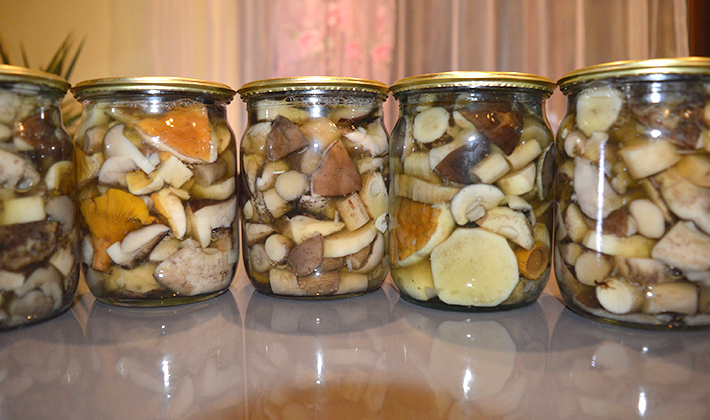 Зимние заготовки из опят на зиму: рецепты приготовления