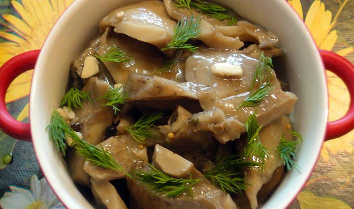 Рецепты маринованных груздей с уксусом на зиму