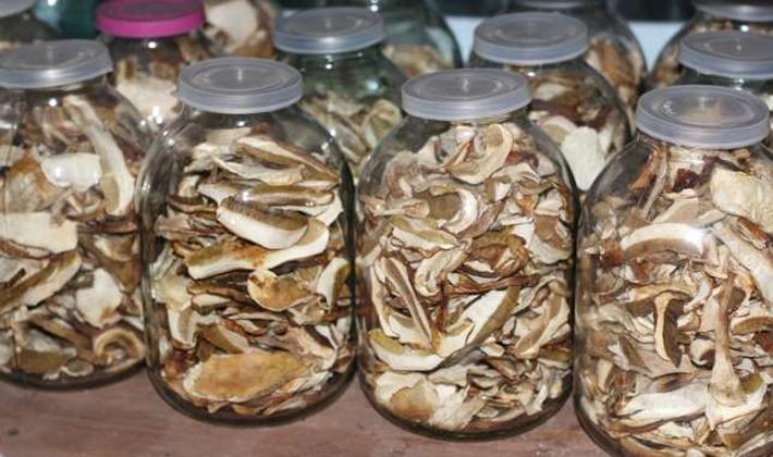 как правильно хранить сухие грибы в домашних условиях