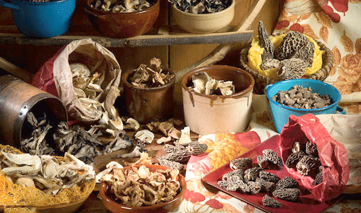 Как сушить белые грибы в домашних условиях