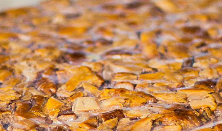 Рецепты приготовления белых грибов на зиму заморозкой