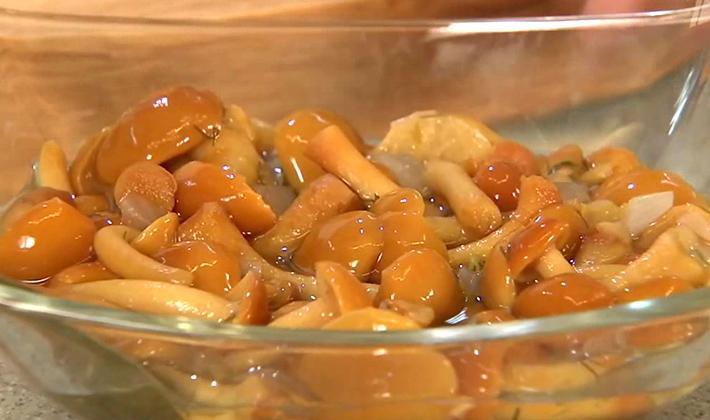 Маринование опят на зиму: рецепты заготовок без стерилизации