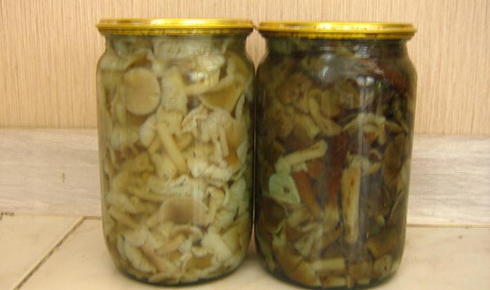 Рецепты консервирования в домашних условиях фото