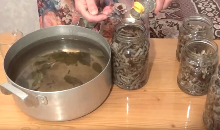 Опята с чесноком, жареные и соленые на зиму