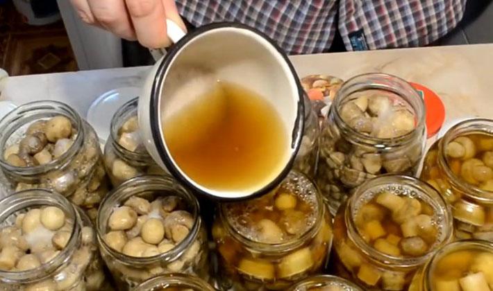 Маринуем белые грибы с уксусом